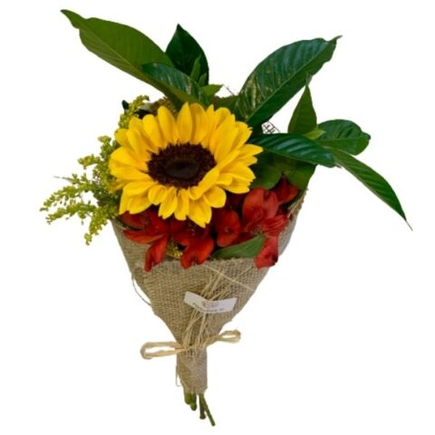 Flor de Girassol Floricultura em Joinville