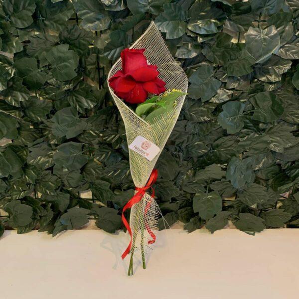 Rosa Individual Floricultura 4R